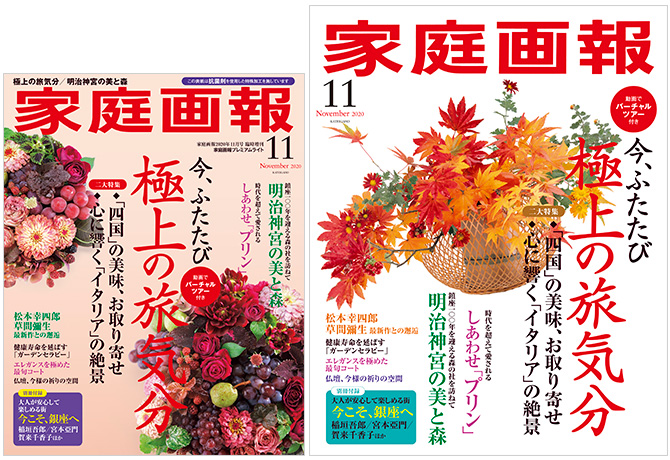 家庭画報11月号に「ねこじゃすり」が掲載されました。